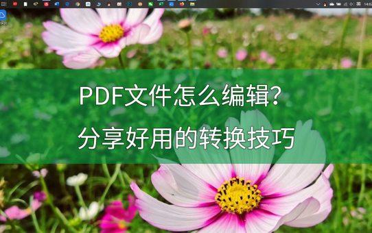 PDF文件怎么编辑?分享PDF转Word的好方法