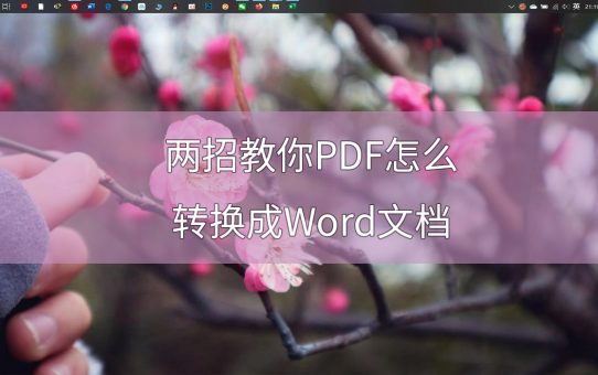 两招教你PDF怎么转换成Word文档