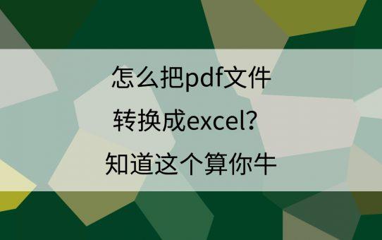 怎么把PDF文件转换成Excel?知道这个算你牛